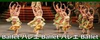 豊島区の山手線 池袋駅にある レンタルスタジオ でバレエ ダンス  教室